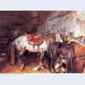 Arab stable 1906