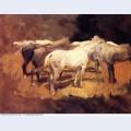 Horses at palma 1908