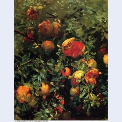 Pomegranates majorca 1908