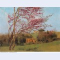 Landscape blossoming red almond study