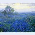 A cloudy day bluebonnets near san antonio texas