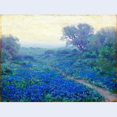 Bluebonnets at sunrise