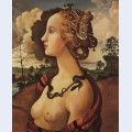 Copy of portrait of simonetta vespucci by piero di cosimo