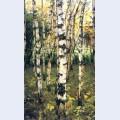 Birches petrovskoye