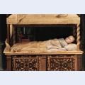 Newborn baby in a crib
