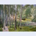 Birch grow