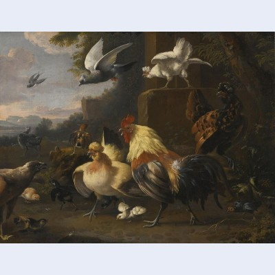 An eagle a cockerell hens a pigeon in flight and other birds