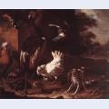 Birds and a spaniel in a garden