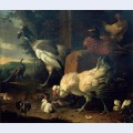Domestic fowl with a pheasant and peacocks