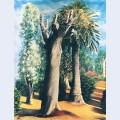 Eucalyptus and palm