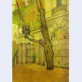 Tsarskoye selo kameronov gallery