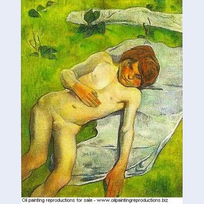 A breton boy 1889 1