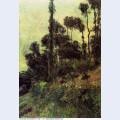 Hillside 1884