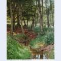 Landscape paintings 136