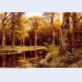 Landscape paintings 79
