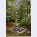 Landscape paintings 84