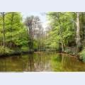Landscape paintings 87