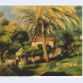The palm tree 1902