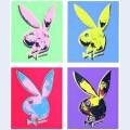 Bunny multiple