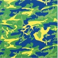 Camouflage c 1987 green blue yellow