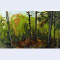 Woodland scene monhegan maine
