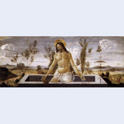 Christ in the sepulchre