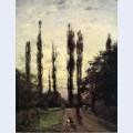 Evening poplars