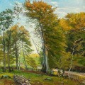 Road through the woods autumn