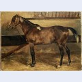 Brown horse in the stalls