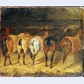 Five horses seen from behind with croupes in a stable