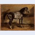 Gray horse rack