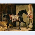 Horse leaving a stable