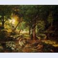 Forest landscape sun