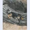 Der hund lapponio