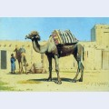 Camel in the courtyard caravanserai
