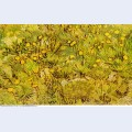 A field of yellow flowers 1889 1
