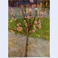 Almond tree in blossom 1888 1