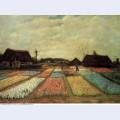 Bulb fields 1883 1