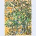 Flowering shrubs 1889 1
