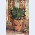 Flowerpot with chives 1887 1