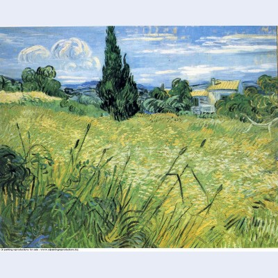 Green wheat field with cypress 1889 1 1