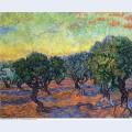 Olive grove orange sky 1889