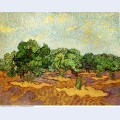 Olive grove pale blue sky 1889