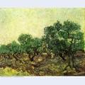 Olive picking 1889 1
