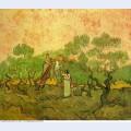 Olive picking 1889