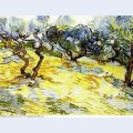 Olive trees bright blue sky 1889