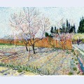 Orchard with peach trees in blossom 1888
