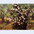 Rosebush in blossom 1889