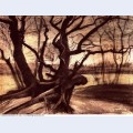 Study of a tree 1882