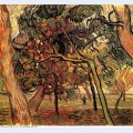 Study of pine trees 1889 1